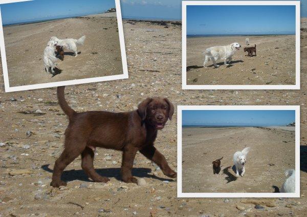 Je découvre le sable
