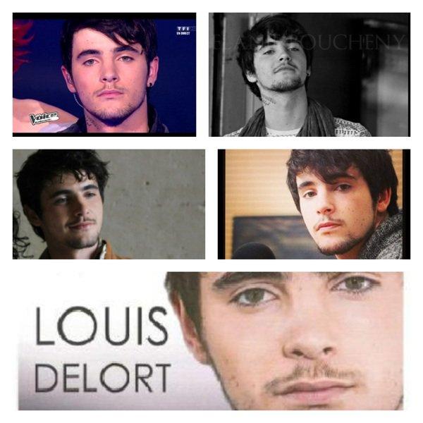Louis-Delort-Blog : Intro
