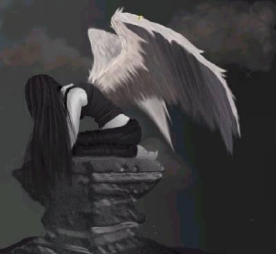 prend ton envol ouvre tes ailes ignore les critique dépasse le malheur et trouve enfin la paix