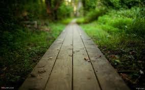 Le chemin ... ♥