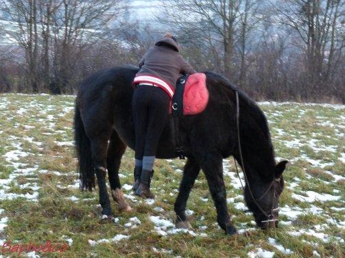 Glandouillage sur chevaux avec Marie + petite frayeur...