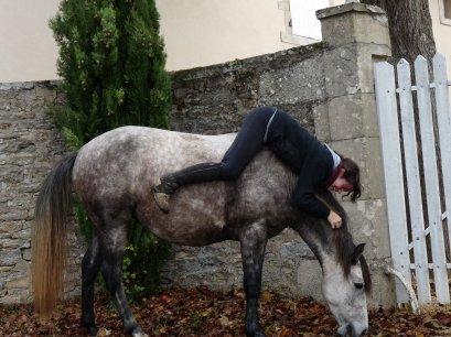 (d'autres photos à venir....) Cours d'obstacle avec Sapho + Uléma...