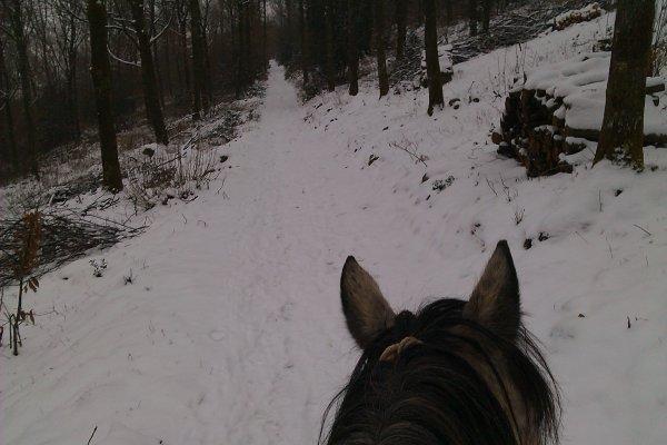 Janvier 2013, entre bouillasse, neige et pluie !