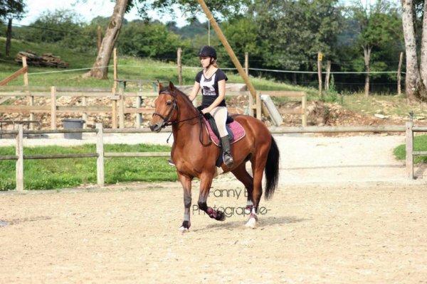 Cours d'équitation près de Vesoul, au Centre Equestre du Frais Puit