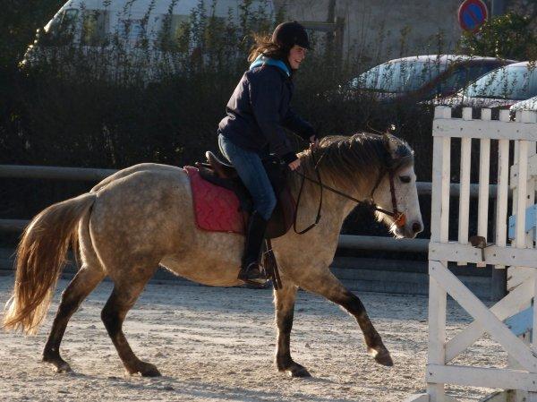 Quelques photos à Cluny, sur mon petit cheval gris !