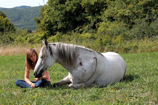"""2ème jour avec Marie : """"dressage"""" avec Sapho et """"travail"""" avec les 3 chevaux au pré"""