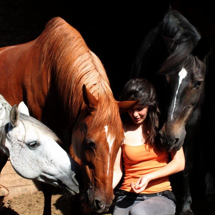 Apprenez à écouter ce que votre cheval murmure à votre oreille. Elisabeth de Corbigny