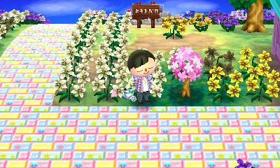 mes jardin