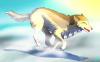 Ma future louve, Lerya (qui maintenant a un nom)