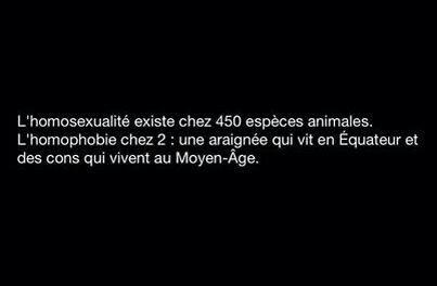 L'homophobie...