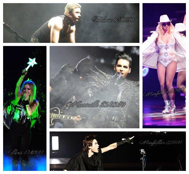 Les concerts : une de mes grandes passions