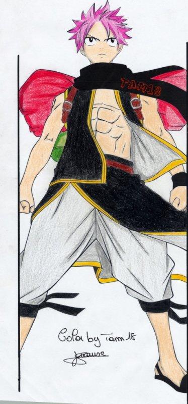 Natsu D. / Fairy Tail