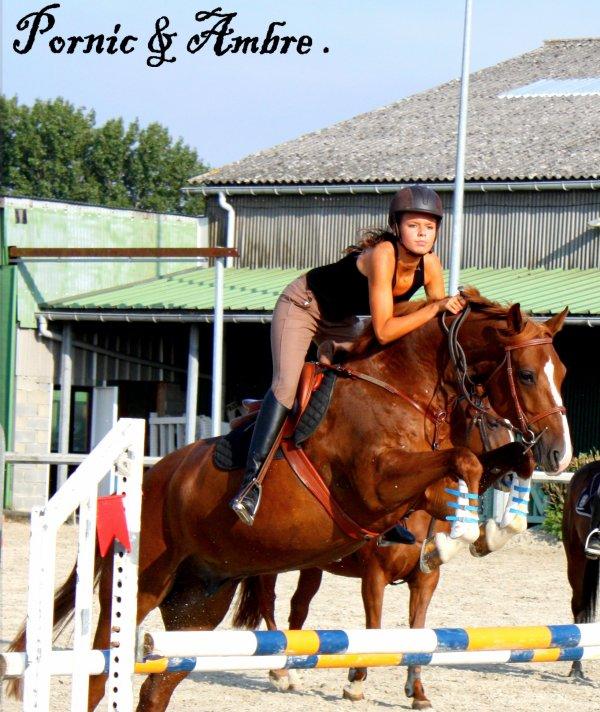 ◘ . Il faut une secondepour remarquer un cheval, une heure pour l'aprécier, une journée pour l'aimer, mais on ne peut pas l'oublier... ◘