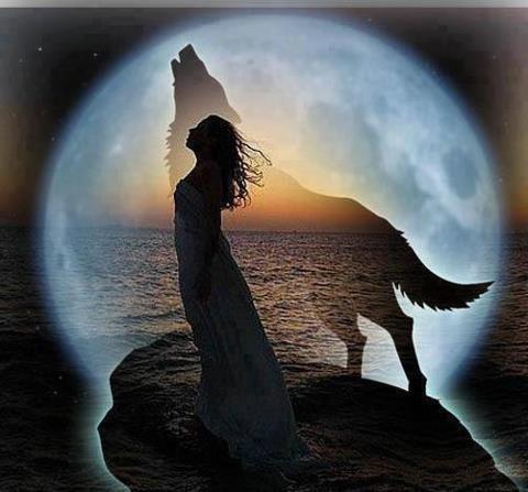 La Pleine Lune Et Le Loup A Til Vraiment Un Point Commun