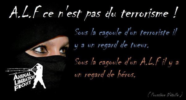 DEMANDONS DES LOIS POUR EUX  les sans voix !!!!