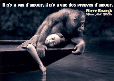 « Si vous êtes digne de son affection, un animal deviendra votre ami mais jamais votre esclave. »  Théophile Gautier.