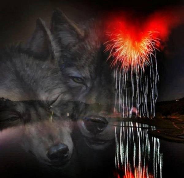 n'oubliez pas  la lutte pour la sauvegarde du loup en france  merci  de signer  toujours d'actualité   bonne nuit