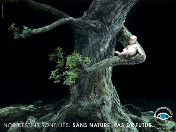 de la nature à l'écologie ..............