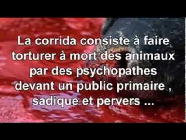 conscience humaine envers l'animal    De l'instinct à la morale Philosophie éthologique.......