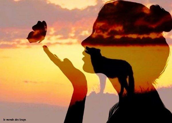 Depuis des siècles, le loup a la réputation d'être une bête cruelle...