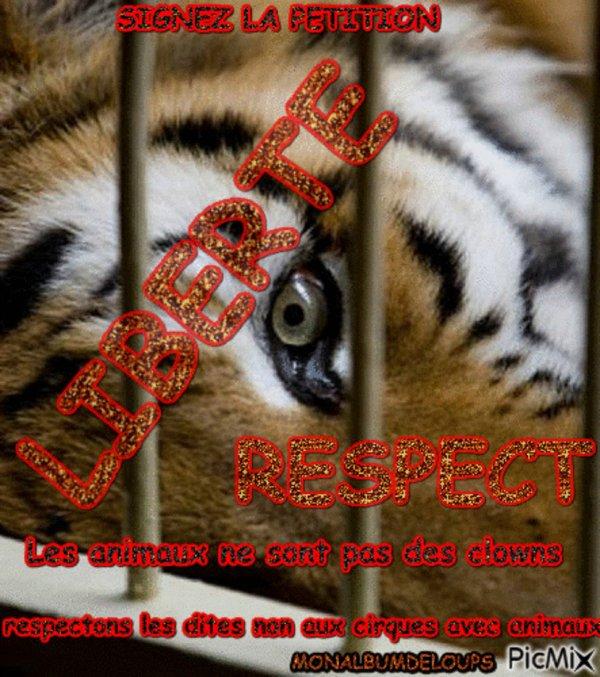 urgent à signer en masse et à partager merciiiiiiiiiiiii si nous grimpons cette pétition alors un changement se présente à l'horizon pour tous nos animaux en général et aussi pour reconsidéré leurs statut ici en France qui est en net retard comparé aux autres pays