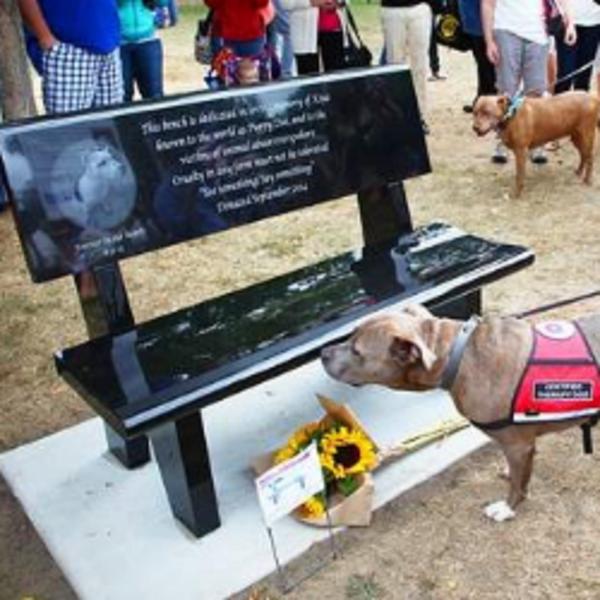 L'inauguration d'un monument contre la maltraitrance animale aux États-Unis