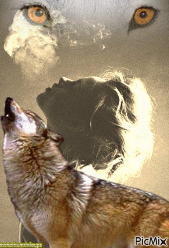À la découverte de la sentience des animaux   One Voice vous invite à plonger dans le monde émotionnel des animaux. De l'altruisme à l'amitié et du rire à la colère, vous serez touchés par une démonstration de la sentience abondamment illustrée d'histoires et d'anecdotes…
