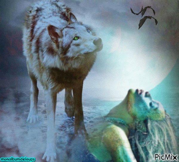 merci de partager  l'animal sauvage est ma lutte  comme tout autre animal sauvage ou domestique  mais j'ai mis ma cause principale sur l'animal sauvage parceque très peu de texte de loi vont en sa faveur nous sommes leur seul cri de détresseeeeeeeeeeeeeeee  qui n'a pas lieu d'être NON LIBRE et de plus maltraité traqué tué comme une chose qui n'aurait pas du être sur terre  mais l'humain n'a pas plus sa place qui lui !!!!!!!!!! alors  stoppppppppppppppp !!!!!  !!!!!!!!!!!  merci de signer  et partager L'éléphant RAJU ne doit pas retourner à ses anciens propriétaires !