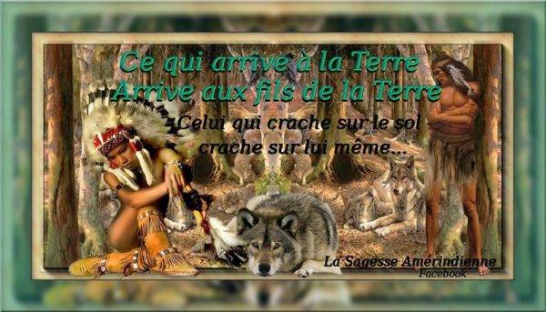 Le destin des Indiens d'Amérique annonçait celui de l'ensemble des habitants de la planète qui assistent impuissants à la destruction de leur environnement, après la confiscation de leur espace et de leurs ressources.