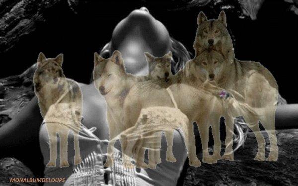 ENQUETE SPECIALE SOUFFRANCE ANIMALE  Vous aimez les animaux et, comme moi, vous ne supportez pas les souffrances dont certains sont victimes.