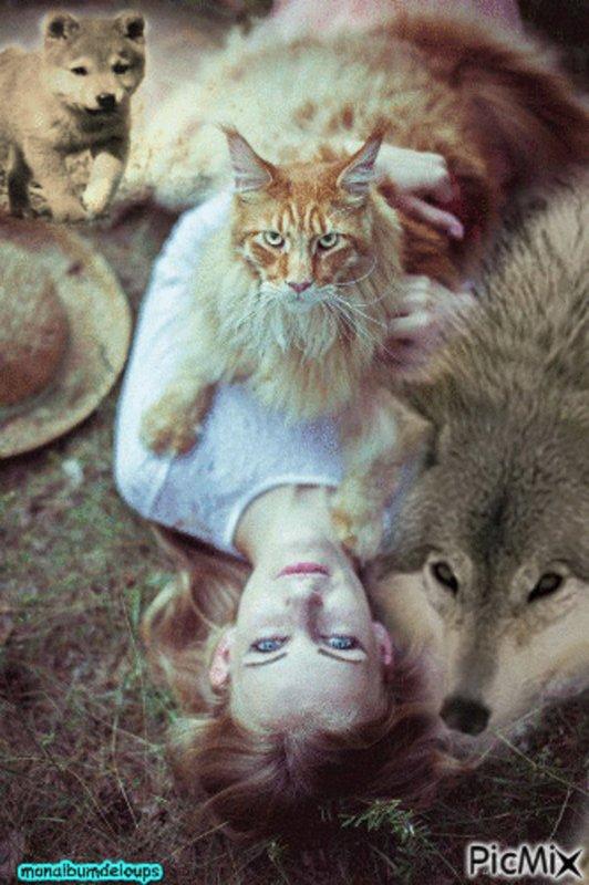 excusez moi pas en forme aujourd'hui et depuis quelques jours ca ira mieux aprés  mais je vous laisse une citation pour nos loups que j'aime tant bonne soirée à tous