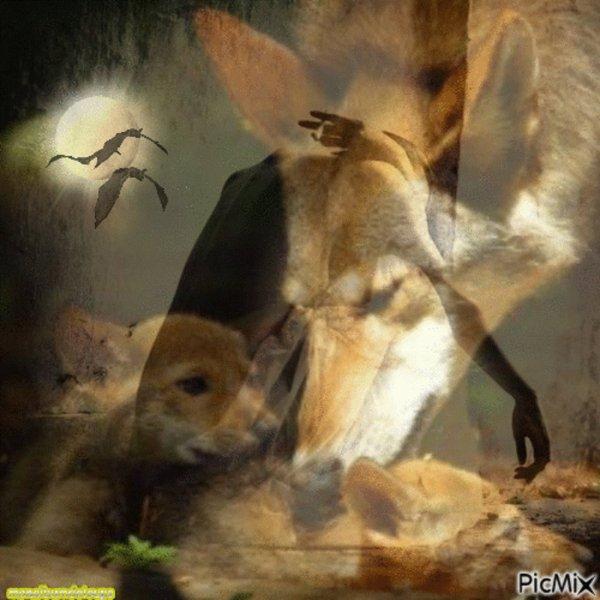 Ce soldat a adopté la chienne qui lui avait sauvé la vie au front. Une histoire bouleversante  En savoir plus: http://www.ohmymag.com/animaux/ce-soldat-a-adopte-la-chienne-qui-lui-avait-sauve-la-vie-au-front-une-histoire-bouleversante visonnezzzzzzzzzzzz
