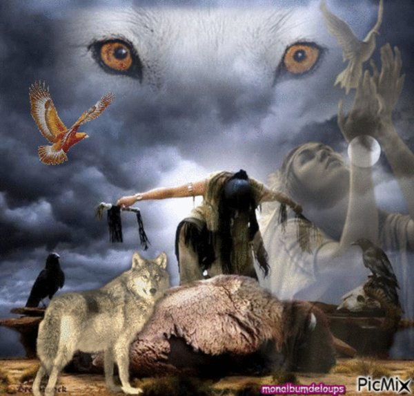 JE VOUS souhaite une bonne semaine pour demain n'oubliez pas le respect de tout être vivant surtout animal ce sont nos sans voix nos sans défense ni lois faites pour eux  !!!!!!!!