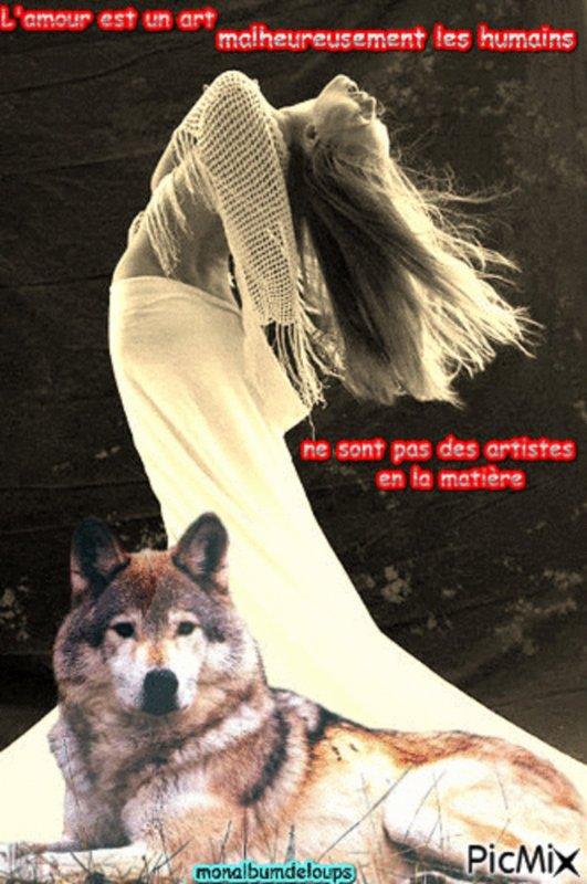 Stop A La Souffrance Animale