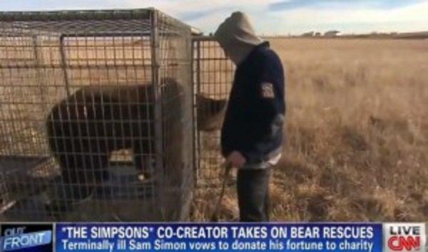 Le créateur des Simpsons atteint d'un cancer sauve deux ours !