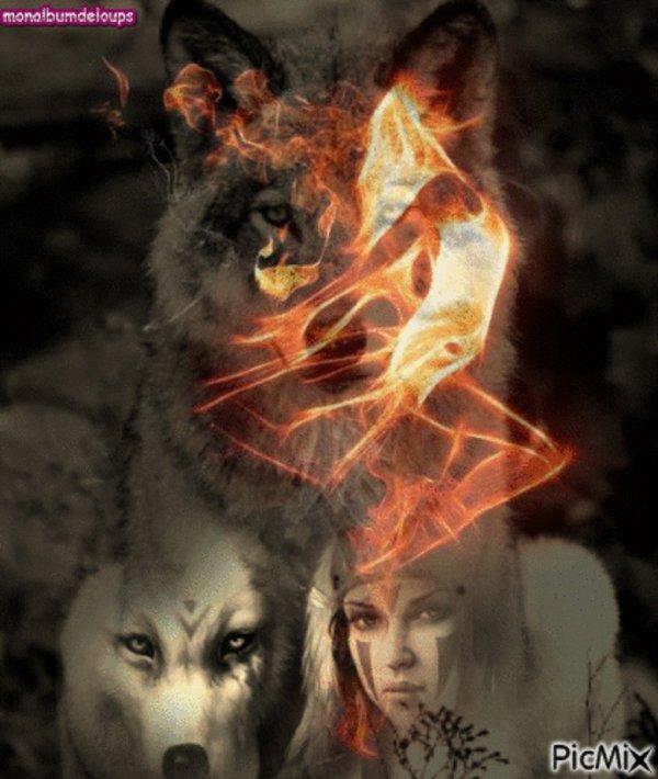 L'apparition et l'évolution du loup