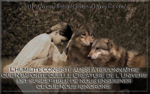 Souffrir en silence comme le loup d'A.Vigny  A méditer pour tous  belle leçon de vie  bonne nuit