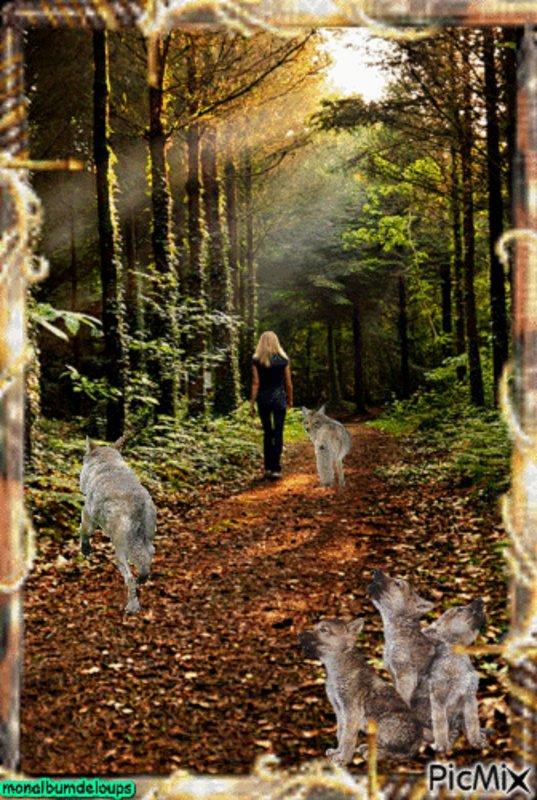 LE DERNIER LOUP    Le cinéma académique de Jean-Jacques Annaud pourra-t-il revenir à la mode ? L'impressionnante bande-annonce du Dernier loup nous fait pencher vers le oui...