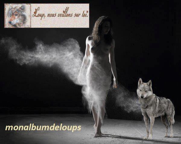 Milieu naturel et écologie des loups