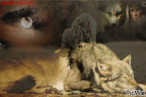 Le maudit loup poursuit parce qu'il est un prédateur, un animal qui joue un rôle primordial dans l'équilibre d'entre le prédateur et sa proie. S'il prend un mouton, l'homme perd de son argent, donc il faut absolument exterminer le méchant loup, le grand méchant loup qui bat pour survivre.