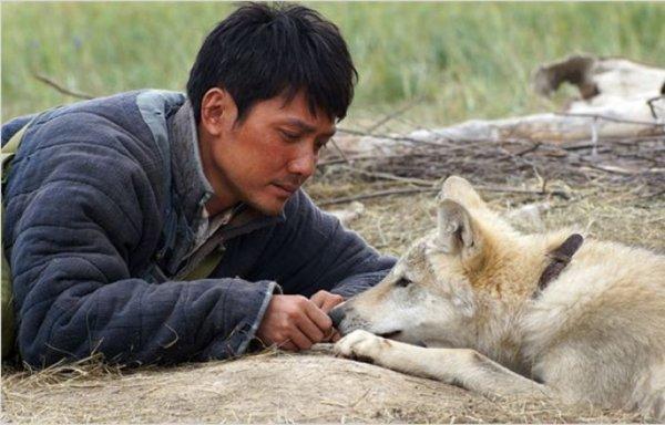 Le film le dernier loup  est sorti hier  selon ce que j'ai pu récolter comme info de très bonnes critiques pour l'instant  en espèrant que ce film fasse un nombre immémorable d'entrées