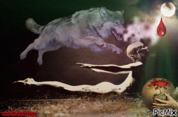 L'heure est grave pour nos loups l'épée de damocles est dessus d'eux :'( politiens de merdeeeeeeeeeeeeeee