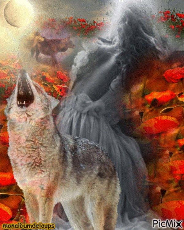 """""""La liberté d'aimer n'est pas moins grande que la liberté de penser."""" Commettre l'injustice est pire que la subir, et j'aimerai mieux quant à moi, la subir que la commettre."""" « La plupart des mécanismes de la vie connaissent des ratés, des failles. La mort jamais. » « Le bonheur est une chose fragile dont il faut profiter sans compter. La vie est monstrueuse.»"""