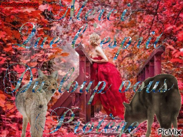 message à ceux qui se disent humains l'abandon, le manque d'affection et la maltraitance d'un animal tue !!!!!!!!!!!!!!!!!!!!!!!!!!!!!!