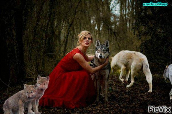 Des loups sont de retour aux portes de Varsovie et y restent QUE LA FRANCE EN PRENNE EXEMPLE !!!!