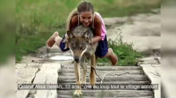 Des bêtes sauvages aux animaux de compagnie