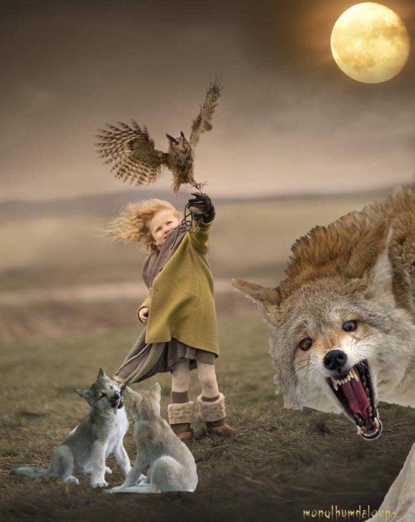 La Vallée des loups  Date de sortie 4 janvier 2017 (1h 30min) De Jean-Michel Bertrand L'histoire d'un pari impossible tenté par un passionné rêveur, un anti héros capable de briser toutes les barrières pour parvenir à son but…