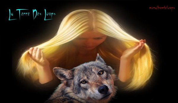 Le Loup biologiquement parlant :  Les bergers malades du loup – analyse d'une émission spéciste