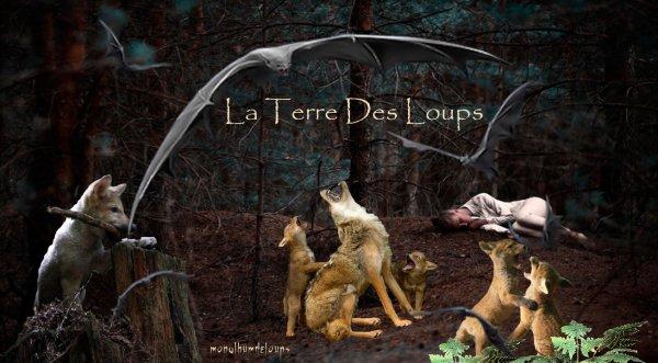 Les Loups: Des animaux complexes aux avantages complexes