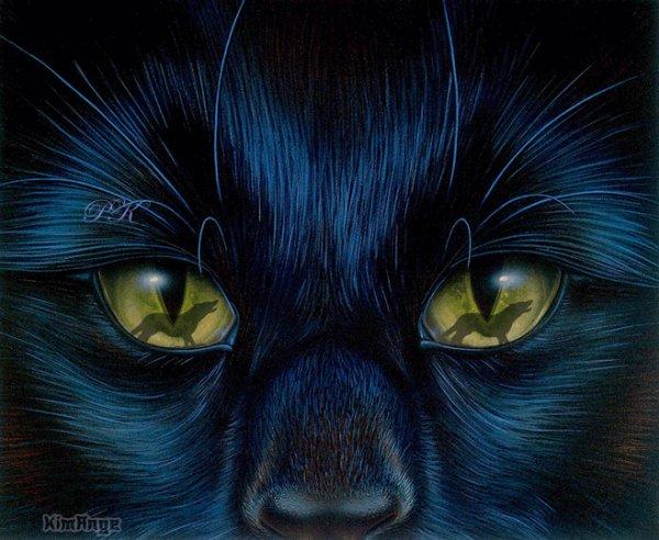 Comment voient nos animaux ??? On dit souvent que les animaux ne distinguent pas les couleurs, que le chat peut voir la nuit, que le taureau est excité par le rouge de la cape du torero... Mais tout ceci est-il vrai ???